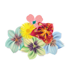 beautiful flowers bouquet summer flowers vector image