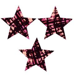 star textured symbol vector image