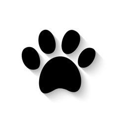 paw print with shadow vector image