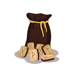 brown bag and wooden magic runes for future vector image