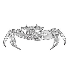 crab hand drawn sea animal vector image