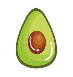 fresh avocado vegetable icon vector image