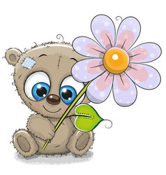 greeting card bear with flower vector image