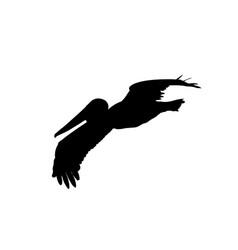 Pelican in flight silhouette vector