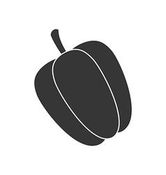 Sweet Bulgarian Bell Pepper vector image