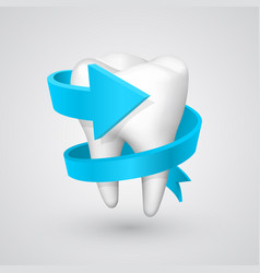 Tooth spiral arrow vector