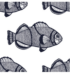clown fish pattern in hand-drawn style vector image