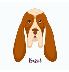 dog Basset vector image