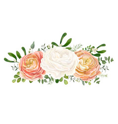 Floral bouquet with white peach ranunculus flowers vector