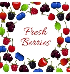 Fresh forest berry and garden berries poster vector image