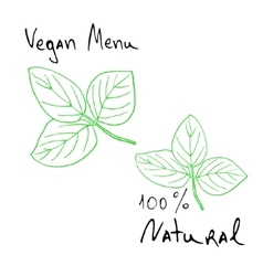 natural products sketch vector image