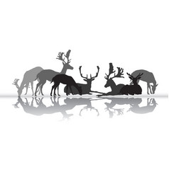 standing and lying deers silhouette with vector image