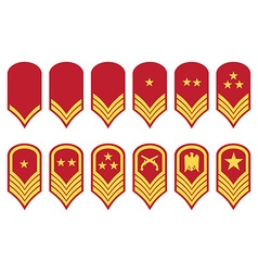 Epaulets military ranks and insignia vector