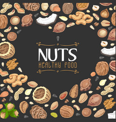 Background with colored nuts and seeds vector