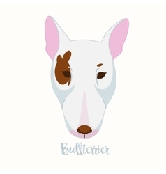 dog Bullterrier vector image