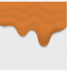 melted sweet carame vector image