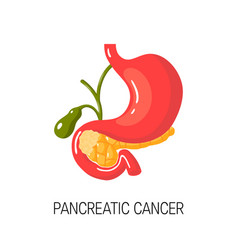 pancreatic cancer concept vector image