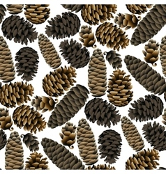 seamless pattern pine cones vector image