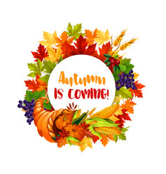 thanksgiving day poster of autumn harvest holiday vector image