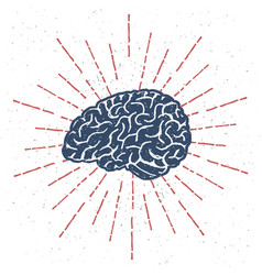 hand drawn brain with vintage sunburst vector image vector image