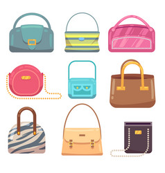 ladies leather hand bags set vector image
