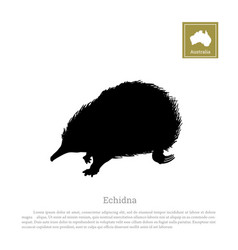 Black silhouette of echidna on a white background vector