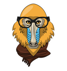 Cool mandrel monkey vector