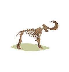 Flat icon of mammoth skeleton bones of vector
