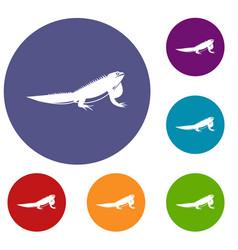 iguana icons set vector image