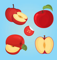 ripe fruit apple slice vector image