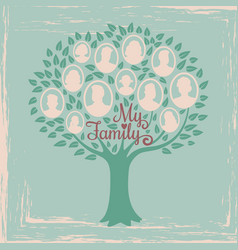 vintage genealogy tree genealogical family tree vector image