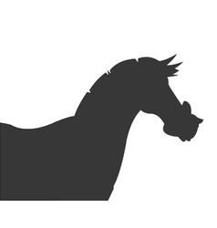 horse cartoon silhouette icon vector image