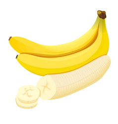 banana ripe fresh bananas isolated on white vector image