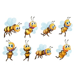 Eight bees in different positions vector image