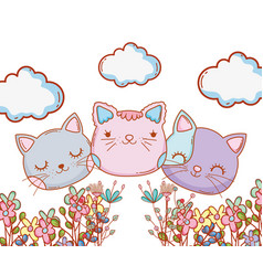 Kitty cats faces cartoon vector