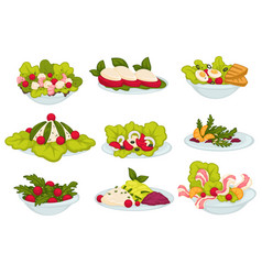 Meals and food set salads and snacks collection vector