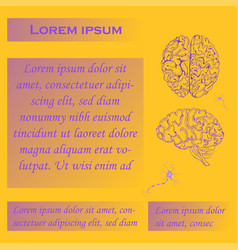 Poster for human brain studies vector