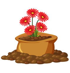 red flowers in brown bag on white background vector image