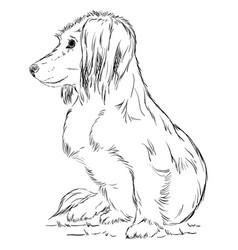 Small dog vector
