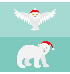 Snowy white owl Polar bear Red Santa hat Flying vector