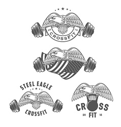Vintage crossfit emblems and design elements vector