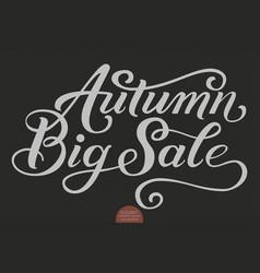 hand drawn lettering - autumn big sale elegant vector image