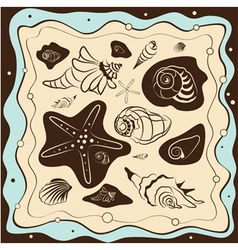sea shell background vector image vector image