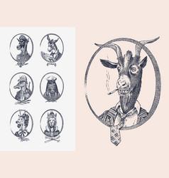 animal characters set smoking goat llama skier vector image