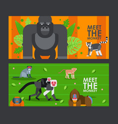 Apes and monkeys in flat style banner vector