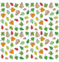 autumn fall minimal design leaves vector image