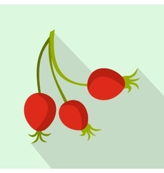 Briar fruits icon flat style vector