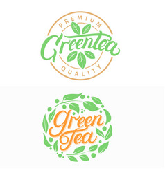 Green tea hand written lettering logos vector