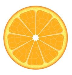 Orange slice on white background vector