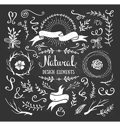Vintage graphic set of flowers branches leafs and vector